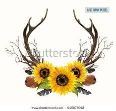 beautiful vector set horns hand drawn stock vector 645077098