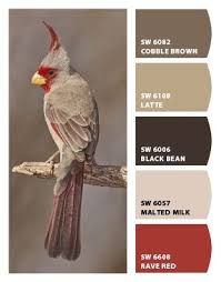 paint colors from chip it by sherwin williams these neutrals