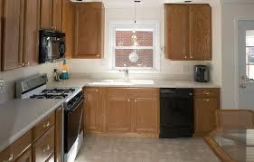 cobonz com 53 l shaped kitchen designs corner sink