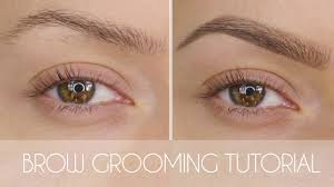eyebrow grooming tutorial in 6 steps shonagh scott showme