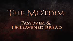 unleavened bread for passover the mo edim passover unleavened bread 119 ministries