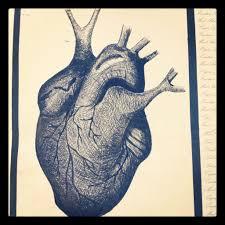 pen sketch of the human heart zainabalawie