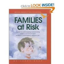 families at risk by jodee kulp understanding allegations in child