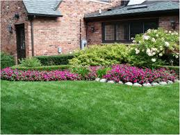 Diy Backyard Landscaping Ideas by Backyards Impressive Enchanting Basic Landscaping Ideas For