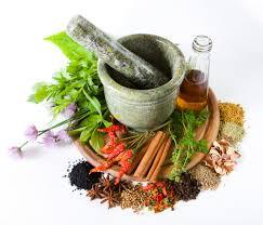 Sweet Flag Herb Herbal Medicine Spirit Of Healthspirit Of Health