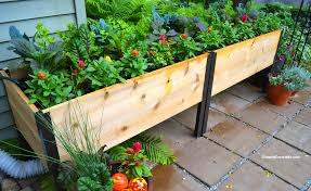 drip irrigation for container gardens or elevated garden beds
