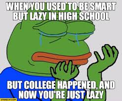 Sad Meme Frog - when you used to be smart but lazy in school but college happened