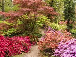 90 best pretty floral arrangements images on