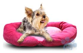 Puppy Beds Comfy Dog Beds And Throws U2013 Elite Pet Group Inc Designed For