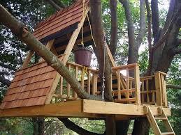Cool Tree Houses Best 25 Kid Tree Houses Ideas On Pinterest Diy Tree House Kids
