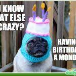 Pug Birthday Meme - pug birthday memes memes pics 2018