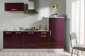 cuisine couleur aubergine cuisine aubergine et blanche pas cher sur cuisinelareduc équipée