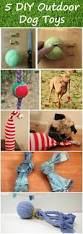 best 25 dog playground ideas on pinterest dog backyard dog