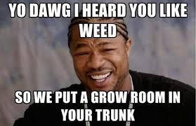 Xzibit Meme - pimp my ride xzibit grow room weed memes