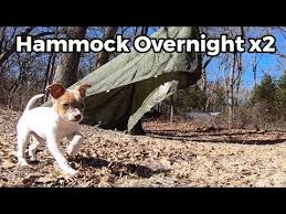 synsurvival hanging out for two nights with texas hammock