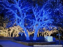 Christmas Lights Texas Christmas In Texas Johnson City U0027s Christmas Lights Books