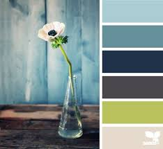 best 25 design seeds ideas on pinterest seeds color schemes