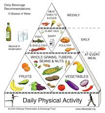 oh the trusty old food pyramid maintenance blog