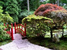 endearing japanese maple garden landscaping design and decoration
