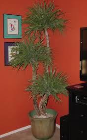 palm tree home decor artificial palm trees home decor home decor ideas