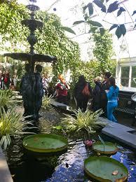 Botanical Garden In Bronx by Home Spun Around Haunted Pumpkins At New York Botanical Garden