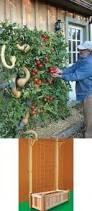how to build a vertical vegetable garden vertical gardens the