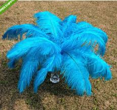 100pcs turquoise ostrich feather for wedding centerpiece