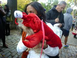 lobster halloween costumes diary of a mad hausfrau east village halloween costume dog parade