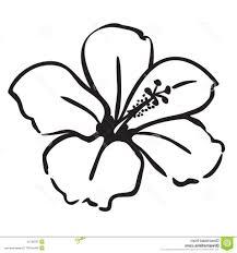 hawaiian flower coloring book page pinterest hawaiian