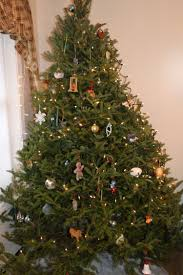 growing up on a maine christmas tree farm laura u0027s house journey