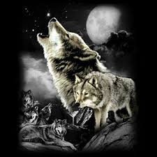 t shirt custom design wolf wilderness howling at the moon