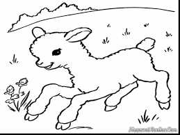 brilliant lion and lamb coloring pages with lamb coloring page