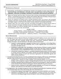 Marketing Professional Resume Sample Marketing Executive Resume Marketing Executive Resume
