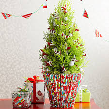 How To Make A Christmas Tree Star For Top - top holiday flowers u0026 plants