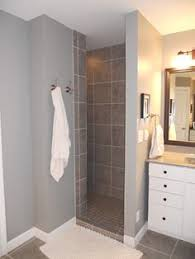 Small Bathroom Walk In Shower Designs Painting Of Compact And Accessible Bathroom Ideas With Walk In