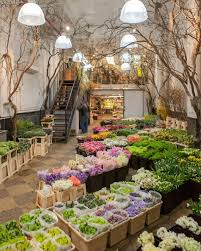 Flower Shops In Salt Lake City Ut - best 25 flower shop design ideas on pinterest florists flower