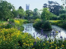 Botanical Gardens Oxford Oxford Botanic Garden Study Abroad Oxford Pinterest