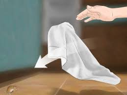 How To Remove A Patio Door by 3 Ways To Get Rid Of Mice Naturally Wikihow