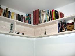 Diy Wall Bookshelves Bookcase Wall Bookshelf How To Build A Bookcase How To Build A