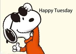 Happy Tuesday Meme - happy tuesday from brl test