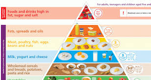 the food pyramid for writers litreactor