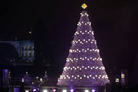 christmas trees and lights photos looking back at eight decades of national christmas trees