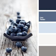 colors that go with light gray color palette 1439 dark blue decoration and dark