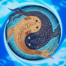 yin yang koi fish mandala digital by barreda