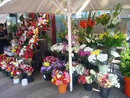 flower shops in file flower shop la rambla jpg wikimedia commons