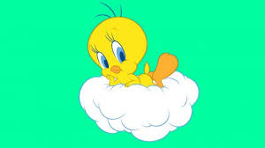 free tweety bird screensaver green background wallpapers