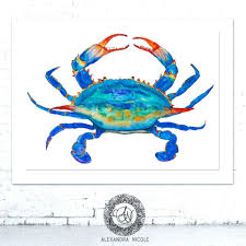 crab decorations for home 91 ideas crab pictures to print on happynewyearscoloring download