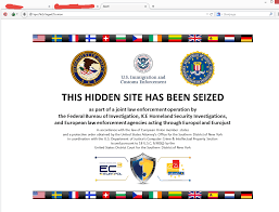 the wiki seized domain dot web
