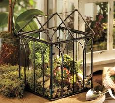 wire terrariums pottery barn