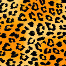 hurry tiger print pictures tattoos cheetah how to draw 6247